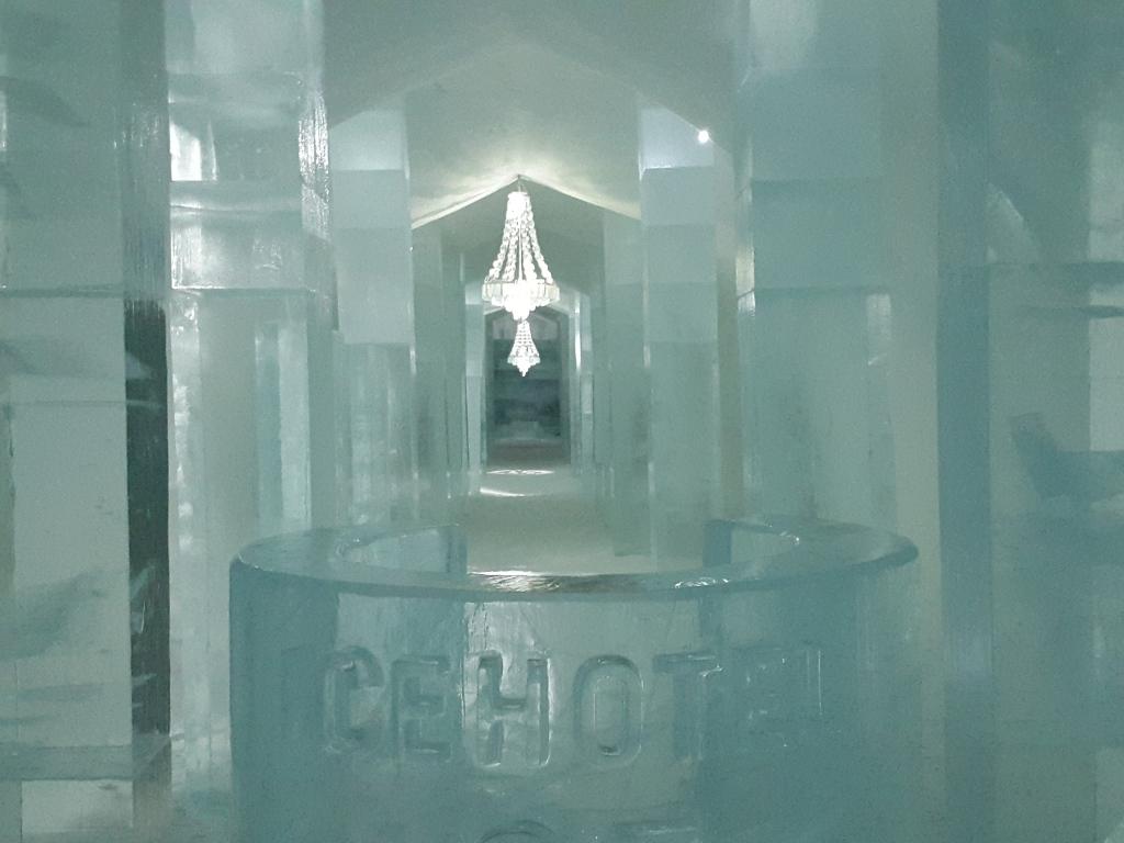 eishotel jukkasj rvi schlafen in einem traum aus schnee und eis rentierin. Black Bedroom Furniture Sets. Home Design Ideas